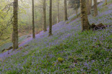 Spa Breaks in Windermere this Spring